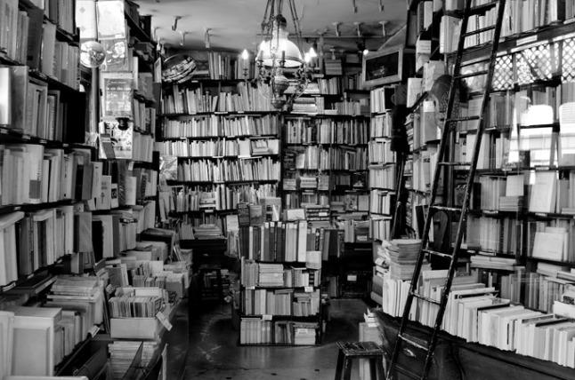 La casa dei libri di Beatrice Speranza.
