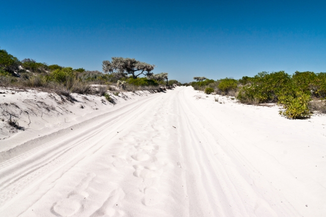 7 Sand track near Salary, south-western Madagascar shutterstock_95481457